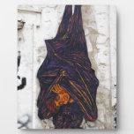 Street art mural flying fox (fruit bat) fantasy photo plaques