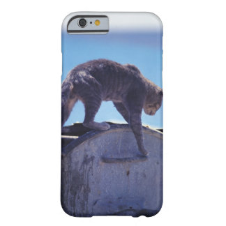 street cat barely there iPhone 6 case