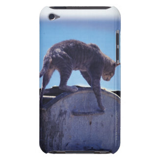 street cat barely there iPod cover