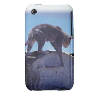 street cat iPhone 3 Case-Mate cases