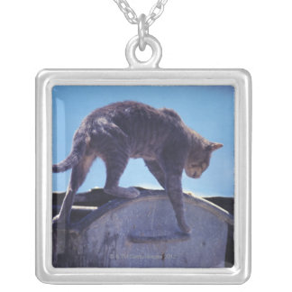 street cat silver plated necklace