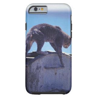 street cat tough iPhone 6 case