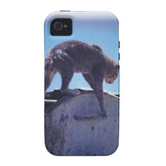 street cat vibe iPhone 4 cases