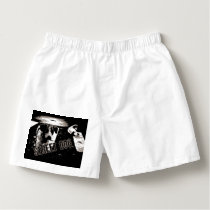 Street dogs boxers
