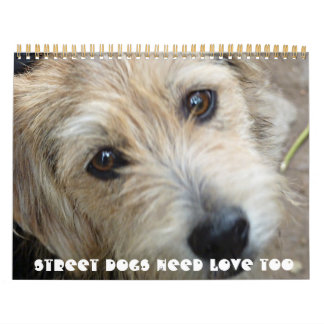 Street Dogs Need Love too! 2011 Calender Calendar