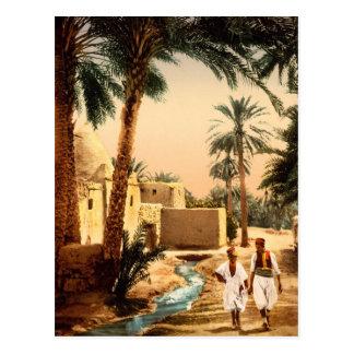 Street in the old town, Biskra, Algeria Postcards