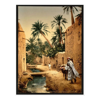 Street in the old town, I, Biskra, Algeria classic Postcard