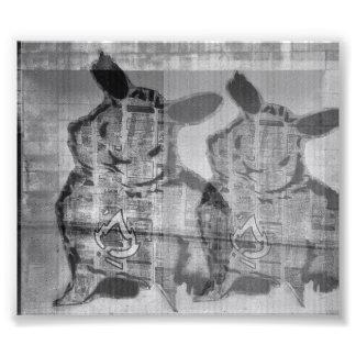 street kind rabbit photo print