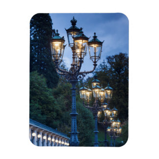 Street lamps at night, Germany Magnet