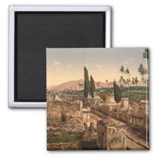 Street of the Tombs, Pompeii, Campania, Italy Magnet
