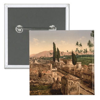 Street of the Tombs, Pompeii, Campania, Italy Pinback Button