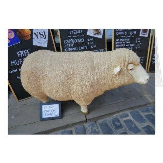 Street Sheep Card