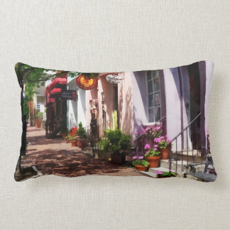 Street With Art Gallery and Tobacconist Alexandria Throw Pillows