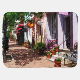 Street With Art Gallery and Tobacconist Alexandria Swaddle Blanket