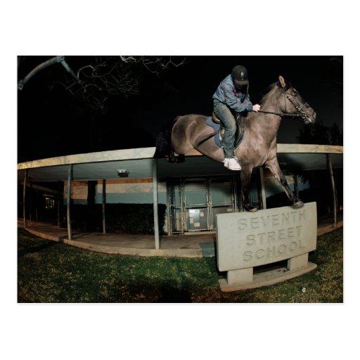 Streethorsing en San Pedro Tarjetas Postales