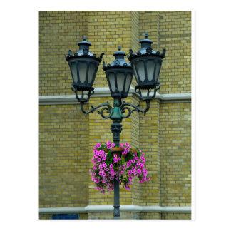 Streetlamp Postcard