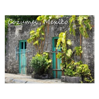 Streets of Cozumel Postcard