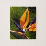 Strelitzia. Bird of paradise flower. Puzzle