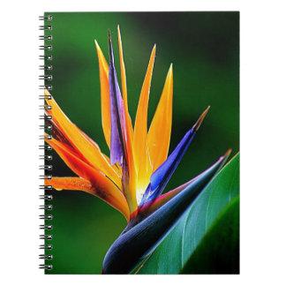 Strelitzia. Bird of paradise flower. Spiral Notebook