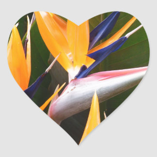 Strelitzia Flower Heart Sticker