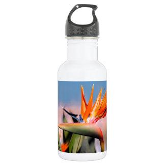 Strelitzia flower water bottle