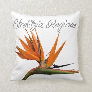 Strelitzia throw cushion throw pillow