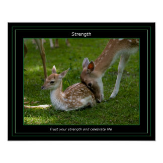 Strenght Poster