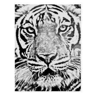 Strength_ del tigre tarjeta postal