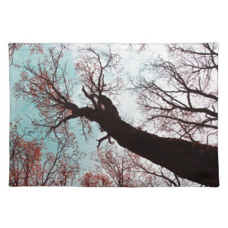 STRENGTH of the TREES Cloth Place Mat