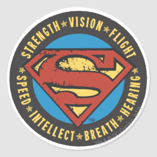 Strength, Vision, Flight Classic Round Sticker