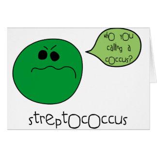 Streptococcus Card
