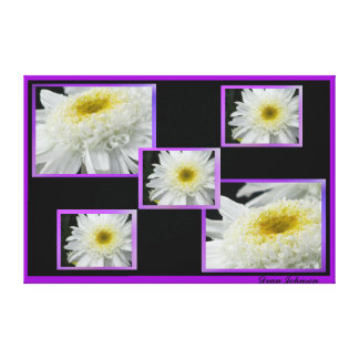 Stretched Canvas Print - White Daisies