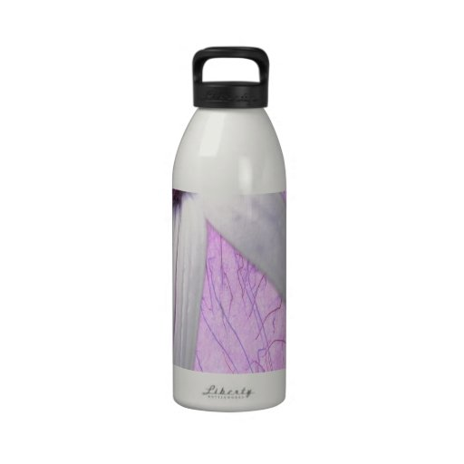 stretched daisy. reusable water bottles