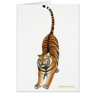 Stretching Bengal Tiger Card