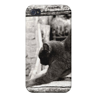 stretching cat case for iPhone 4