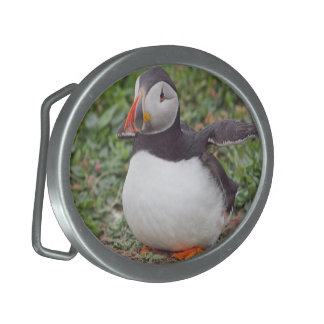 Stretching Puffin Buckle Belt Buckle