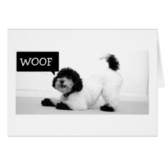 STRETCHING PUP WANTS TO JUMP FOR JOY BIRTHDAY CARD