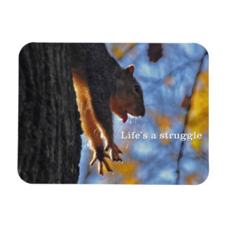Stretching Squirrel 2 Magnet