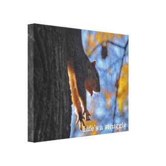 Stretching Squirrel Gallery Wrapped Canvas