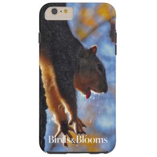 Stretching Squirrel Tough iPhone 6 Plus Case
