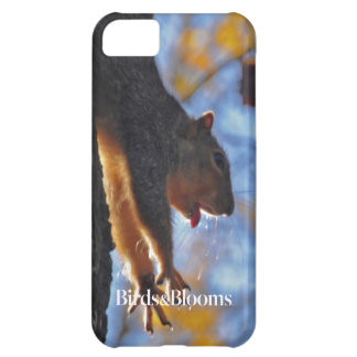 Stretching Squirrel Cover For iPhone 5C
