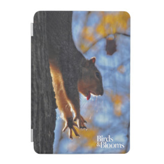 Stretching Squirrel iPad Mini Cover