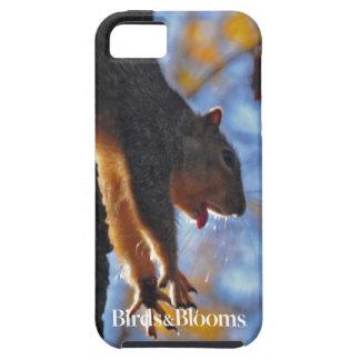 Stretching Squirrel iPhone SE/5/5s Case