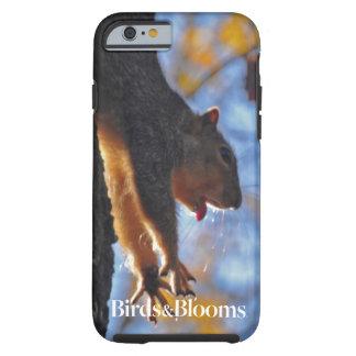 Stretching Squirrel Tough iPhone 6 Case