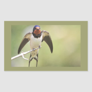 Stretching Swallow Rectangle Sticker