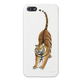 Stretching Tiger iPhone Case