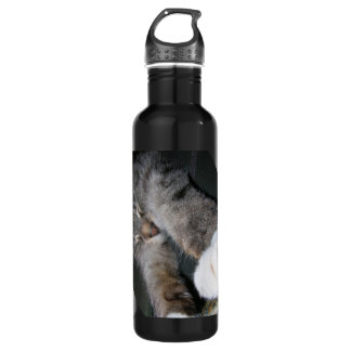 Stretchy Cat Water Bottle