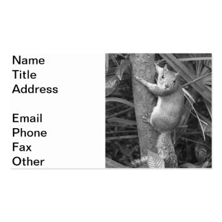Strike a Pose 2 Double-Sided Standard Business Cards (Pack Of 100)