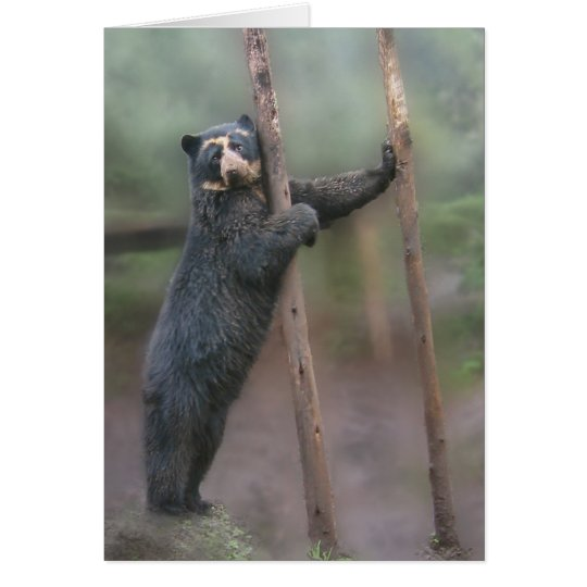 Strike a Pose - Bubu Notecard