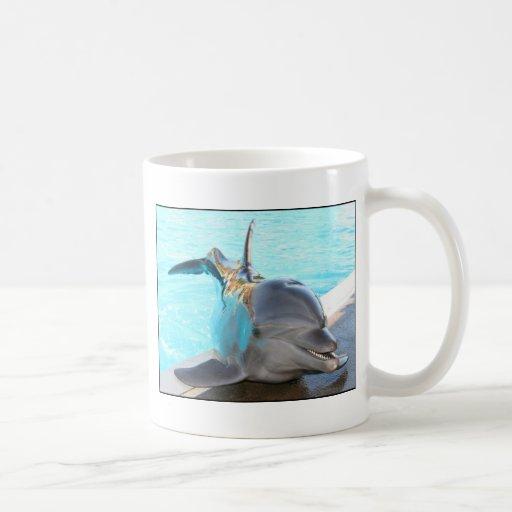 Strike a Pose (Dolphin Photo) Coffee Mug